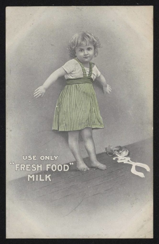 NSW Fresh Food & Ice Co. advertising postcard